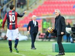 Mattia Destro e Roberto Donadoni. Getty