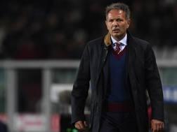 Il tecnico del Torino Sinisa Mihajlovic. Getty