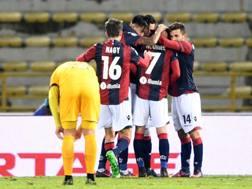 Festa rossoblù dopo il gol di Di Francesco. LaPresse