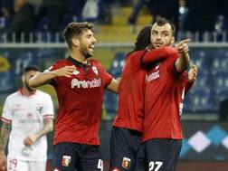 La gioia dei giocatori del Genoa. Lapresse