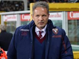 Sinisa Mihajlovic, prima stagione sulla panchina del Torino. Ansa