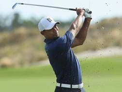 Tiger Woods . Afp