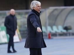 L'allenatore dell'Atalanta Gian Piero Gasperini. LaPresse