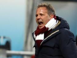 Sinisa Mihajlovic, prima stagione al Torino. Ansa