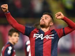 Anthony Mounier, 29 anni, con la maglia del Bologna.