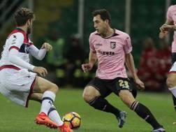 Mato Jajalo durante la sfida Palermo-Crotone. LaPresse