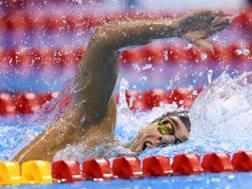 Gregorio Paltrinieri, 22 anni di Carpi, olimpionico, iridato e campione europeo dei 1500. Inside