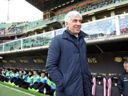 Gian Piero Gasperini, allenatore dell'Atalanta dalla scorsa estate. Getty Images
