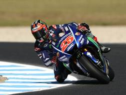 Maverick Vinales, prima stagione con la Yamaha. Getty