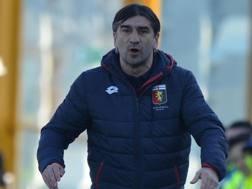 Ivan Juric, allenatore del Genoa. LaPresse