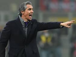 Paulo Sousa, tecnico della Fiorentina. Bozzani