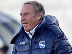 Zdenek Zeman, 69 anni, allenatore del Pescara. Getty Images