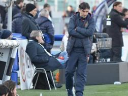 Il tecnico del Genoa  Ivan Jurić, 41 anni. Ansa