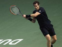 Andy Murray in campo a Dubai. Ap