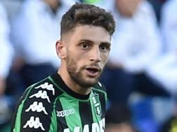 Domenico Berardi, 22 anni. GETTY