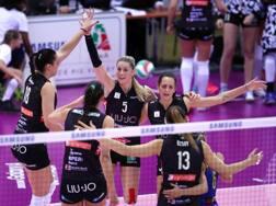 L'esultanza di Modena per la vittoria su Scandicci nella semifinale di Coppa Italia RUBIN/LVF