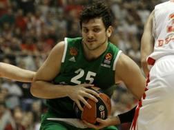 Alessandro Gentile, 24 anni, in Eurolega con la maglia del Panathinaikos. Epa
