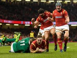 L'urlo di George North dopo la prima meta gallese. Getty