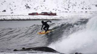 Carroll, surf nell'Artico e altre foto del giorno