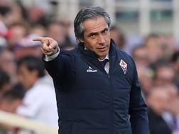 Paulo Sousa, tecnico della Fiorentina. Getty