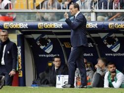 L'allenatore della Juve Massimiliano Allegri. LaPresse