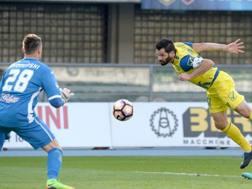 Il gol in tuffo di testa di Pellissier contro l'Empoli. Getty
