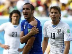 Giorgio Chiellini, 32 anni, difensore della Juventus, durante Uruguay-Italia del Mondiale 2014. Action Images