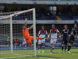 Il gol di Ferrari (fuori quadro) per l'1-0 del Crotone. Ansa