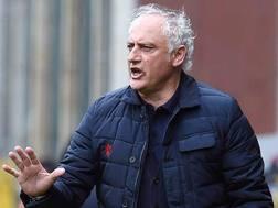 Andrea Mandorlini, tecnico del Genoa. LaPresse
