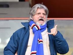 Massimo Ferrero a Marassi per la
