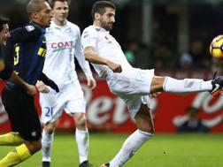 Alessandro Gamberini, difensore, 35 anni, al Chievo dal 2014. LaPresse