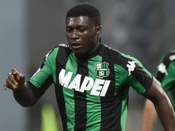 Joseph Alfred Duncan, 24 anni, centrocampista ghanese del Sassuolo. Getty Images