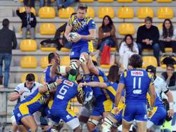 Touche in Warriors-Zebre. Fama
