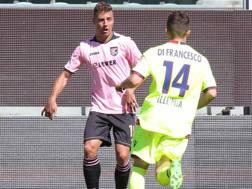 Cionek contro Di Francesco durante Palermo-Bologna. LaPresse