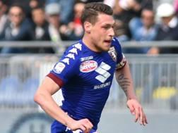 Andrea Belotti, attaccante del Torino. LaPresse