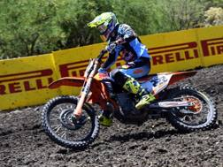 Tony Cairoli in azione