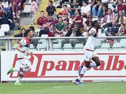 L'esultanza di Nwankwo Simy dopo il gol al Torino. Ansa