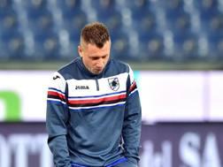 Antonio Cassano, è attualmente senza squadra dopo la rescissione con la Samp. ANSA