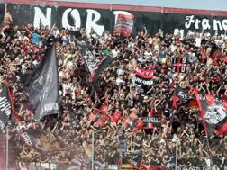 Il Foggia pareggia col Fondi ed è in Serie B. LaPresse