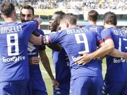 I festeggiamenti per il gol di Zappacosta. Lapresse