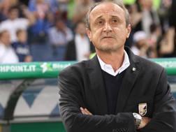Delio Rossi, ex allenatore di Palermo e Fiorentina. Ansa