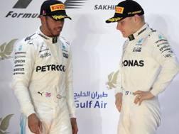 Hamilton e Bottas, prima stagione da compagni di squadra. Ap
