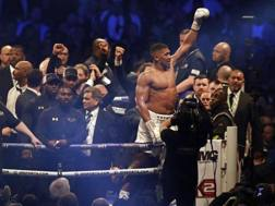 Anthony Joshua in trionfo a Wembley. Ap