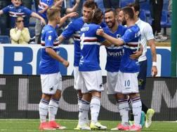 La Sampdoria festeggia il vantaggio di Fabio Quagliarella. Getty