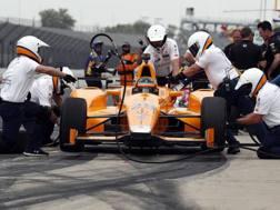 Fernando Alonso sempre più a suo agio a Indy. Reuters