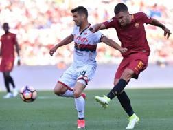 Strootman in campo contro il Genoa, con Miguel Veloso. LaPresse