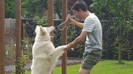Tom Dumoulin, 26 anni, intento a giocare con il suo cane.