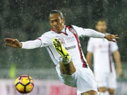 Bruno Alves, 35 anni. LaPresse