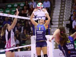 Katarzyna Skorupa, 32 anni, nell'ultima stagione in azione con la maglia di Conegliano RUBIN/LVF