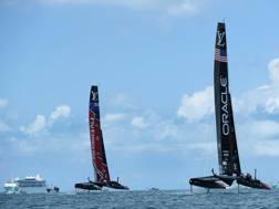 New Zealand: vantaggi importanti su Oracle